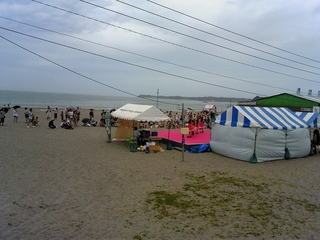 TS3V013018日の海岸での様子.jpg